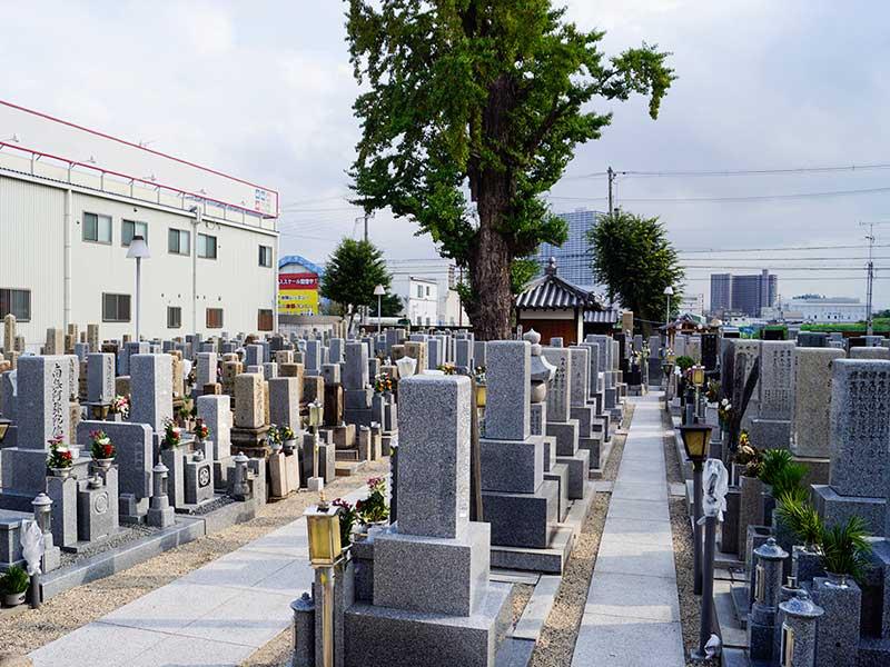 八尾市立 久宝寺墓地 フラットな参道