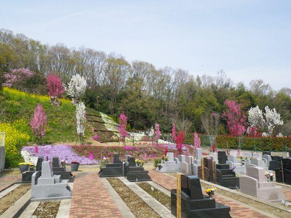 湘南メモリアルガーデン 桃や菜の花が咲く園内