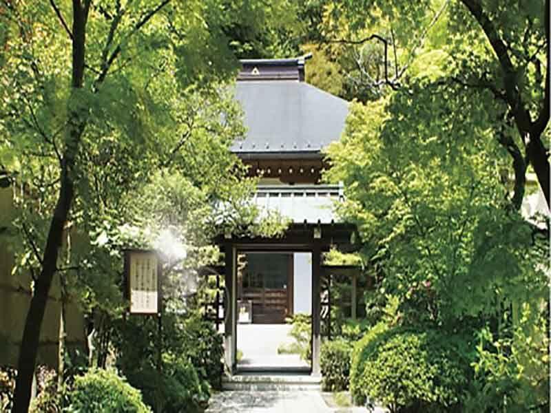 龍峰院 緑が美しい境内の様子