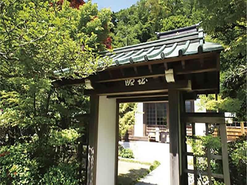 龍峰院 緑豊かな境内の様子