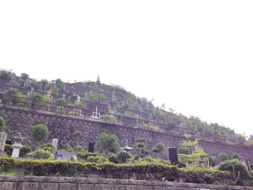 高尾霊園6