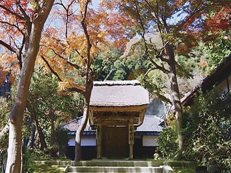大本山 円覚寺 居士林