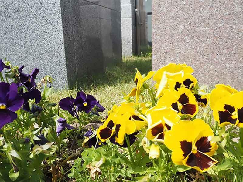 芝生の霊園あさか野セカンドステージ 芝生と花で彩られた園内