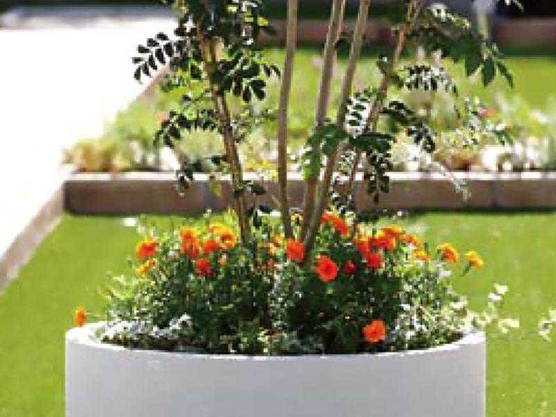 鶴ヶ島さくら並木霊園セントソフィア 綺麗な花壇