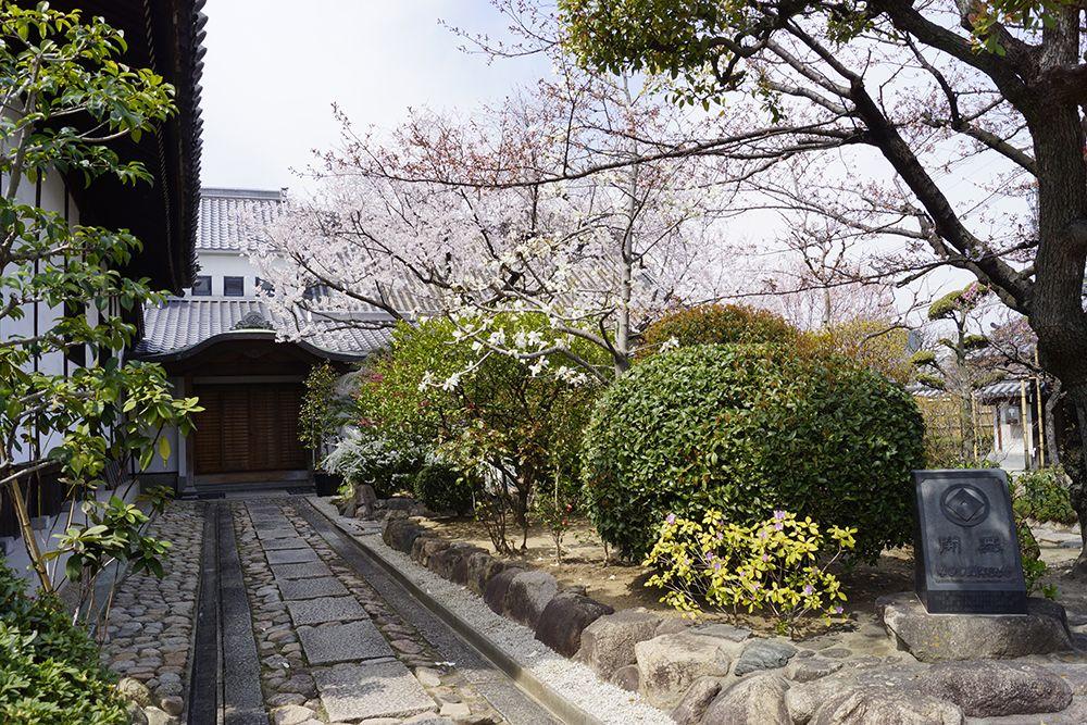 銀山寺墓地 手入れの行き届いた植栽