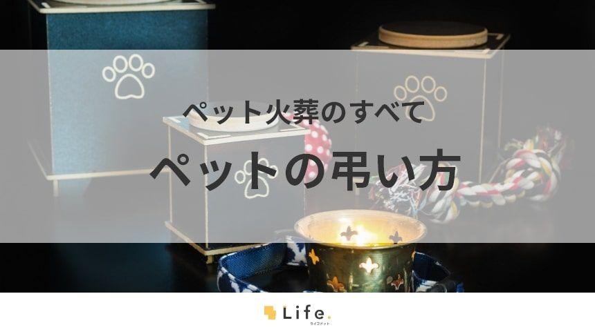 【ペット火葬】アイキャッチ画像