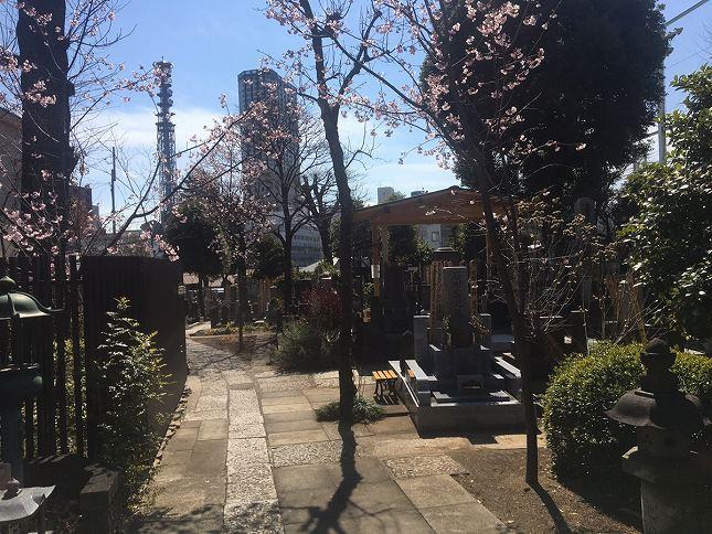 恵光メモリアル新宿浄苑 苑内はバリアフリー設計