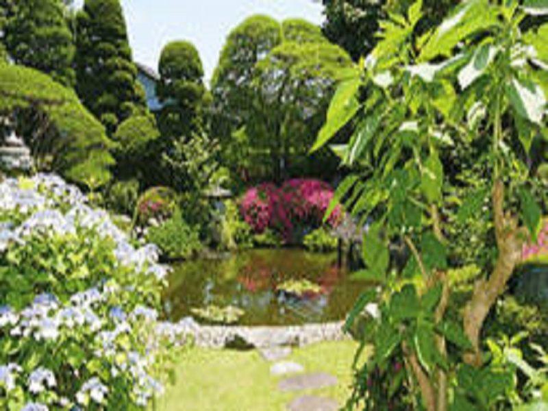 悠久の碑 八王子梅洞寺 美しい庭園風景