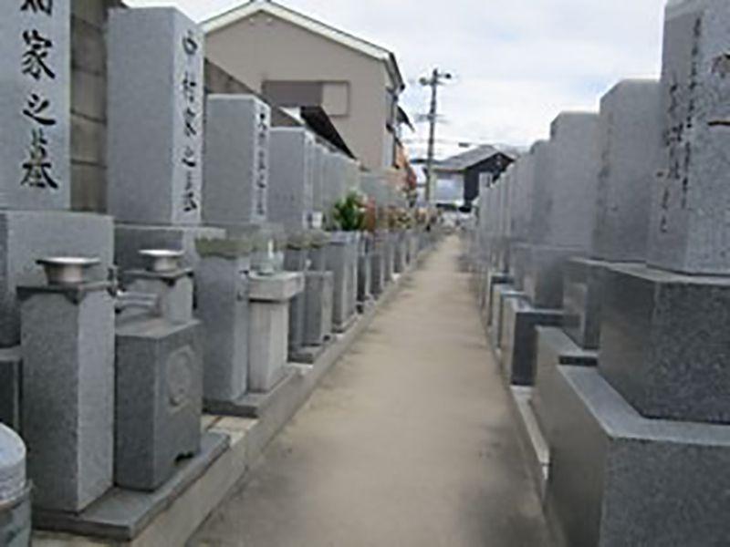 大阪市設 住吉霊園 整備された区画