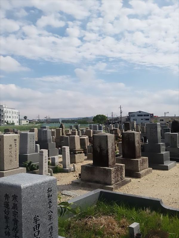 招堤共同墓地 解放感が溢れる墓地