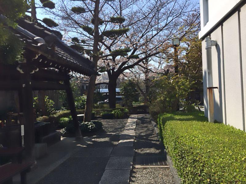 妙光寺墓苑