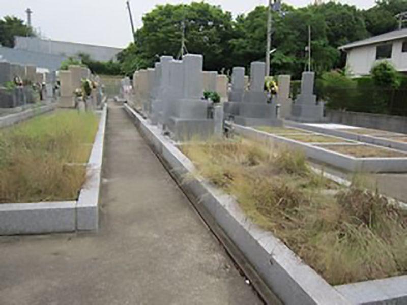 常磐墓地 フラットな参道