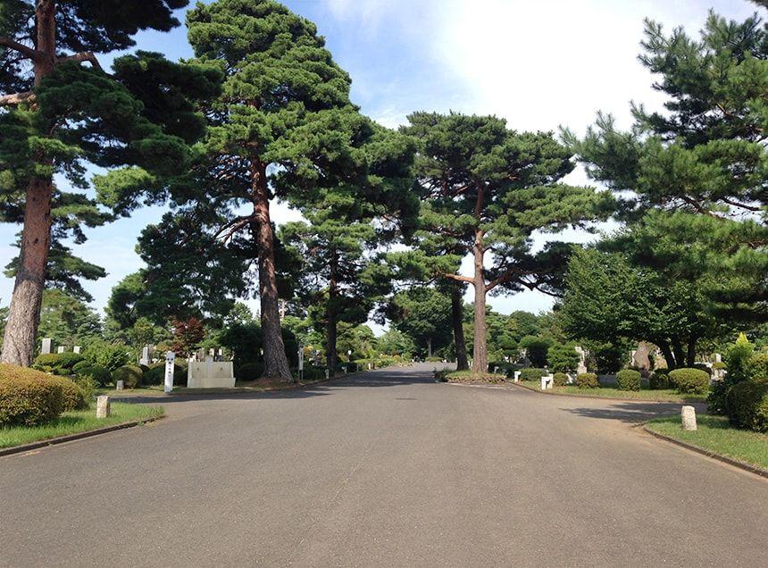 小平霊園8