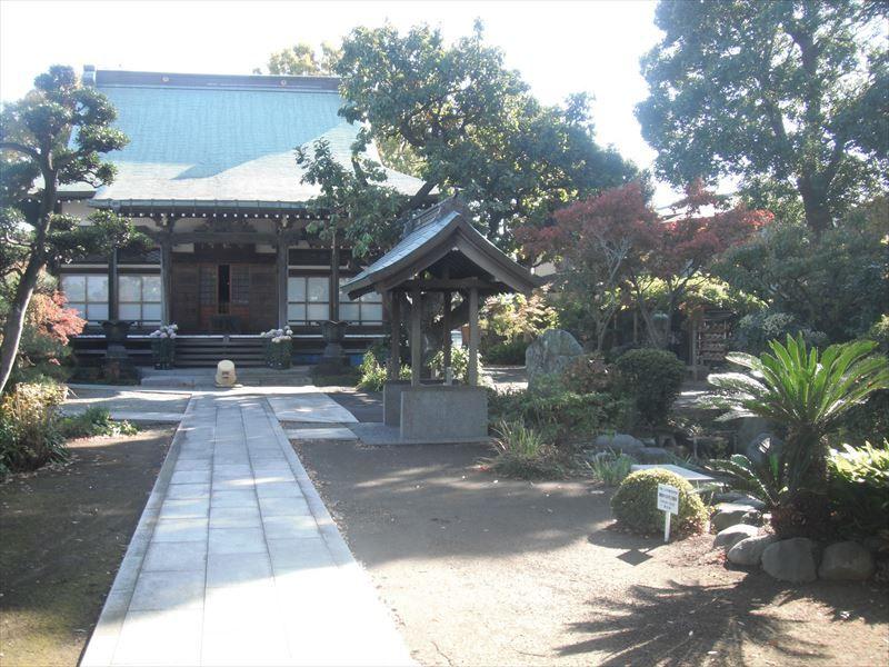 常在寺 本堂前の豊かな植栽