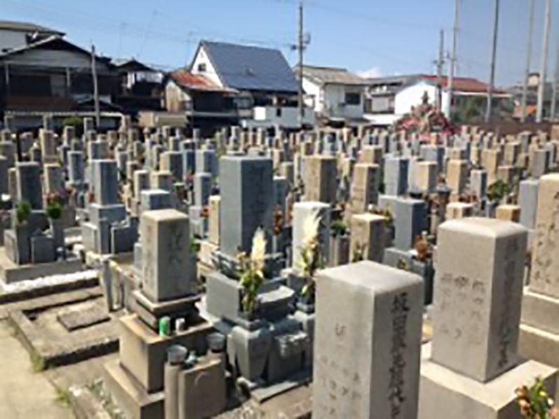 湊西共同墓地 日当たり良好な墓地