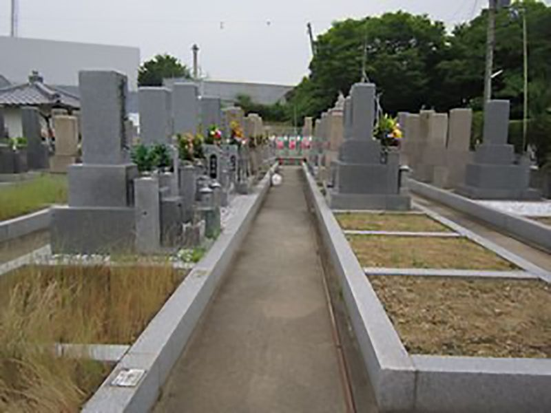 常磐墓地 整備された区画
