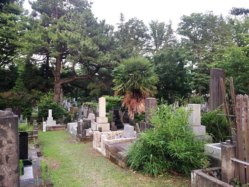雑司ヶ谷霊園16