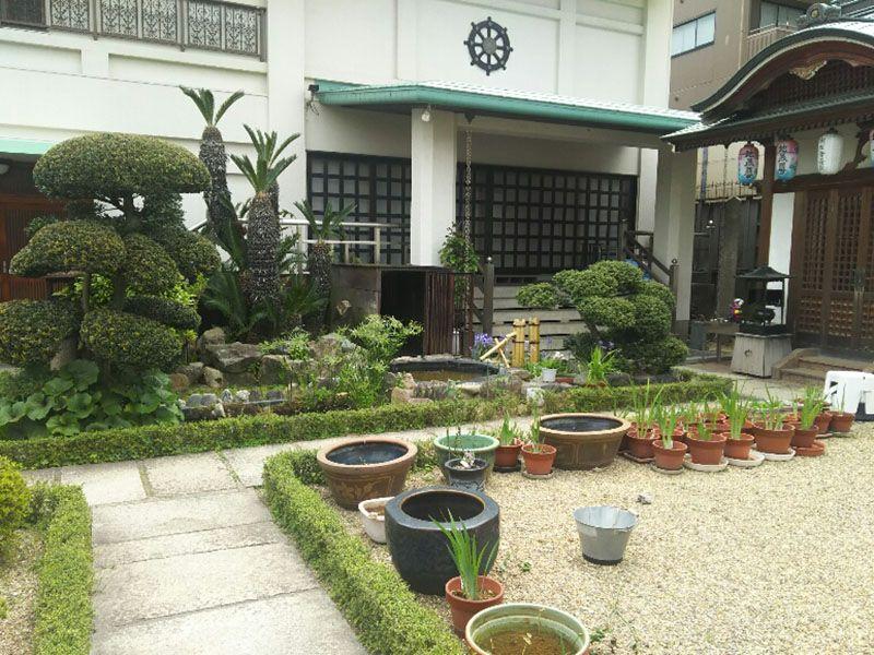 大善寺墓苑 本堂前の庭